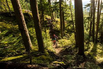 Whistler Singletrack Mountain Bike Tour