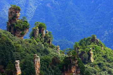 Zhangjiajie National Forest Park Day Tour Including Lunch