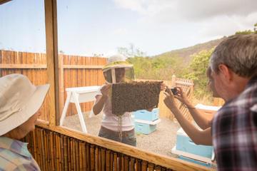 Kona: plantación de café, bahía de Kealakekua, parque de...