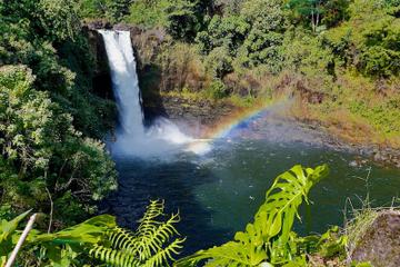 Visite des cascades de Big Island au départ de Kona: vallée de...