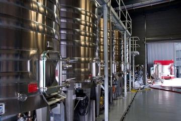 Excursão para a vinícola Lane Vineyard e Degustação de Vinhos