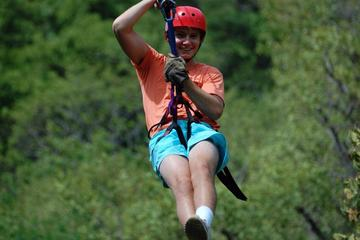 Zip lining in Tamarindo Area