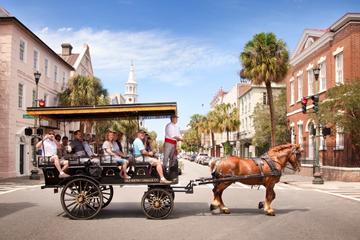Historische Old South-Kutschfahrt in Charleston