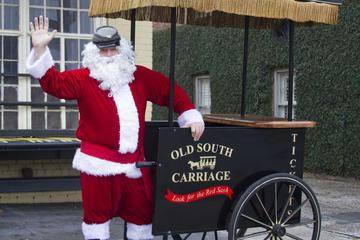 Santa Sleigh Ride Carriage Tour