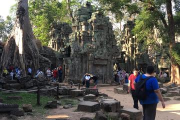 7Days Cambodia Discovery Only Car & Driver