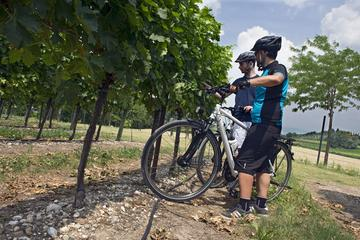Lands of Custoza e-bike full day tour, discovering the history