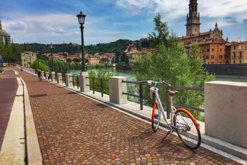 Panoramic E-Bike tour of Verona with Lunch