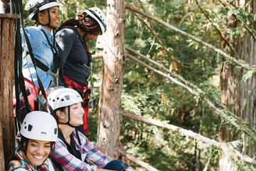 Book Ziplining Adventure in Sonoma on Viator
