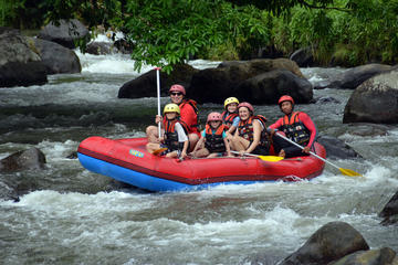 Bali Rafting and Private Combination Ubud Tour Packages