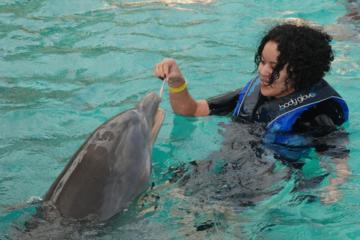 Nado com os golfinhos em Blue Lagoon saindo de Nassau