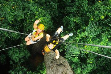 バンコク発熱帯雨林を行くキャノピー ジップライ…