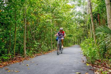 Día completo en bicicleta en la isla...