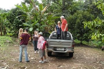 Private Tour: Regenwald-Abenteuer im Geländewagen von Bangkok aus...