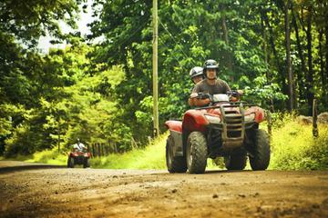 Quad-Dschungelabenteuer ab Chiang Mai