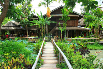Recorrido privado: Pueblo Mae Kampong desde Chiang Mai
