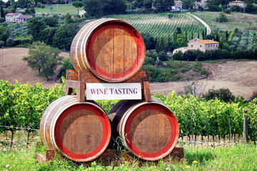 Chianti Classico Tour with Lunch