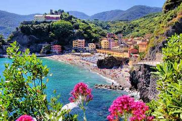 Cinque Terre and Pisa Full-Day Private Shore Excursion from Livorno Port