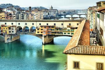 Firenze, Uffizi e Chianti in minivan da Pisa con degustazione di vino