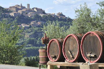 Lucca Montecarlo and Wine Tour by Minivan from Pisa