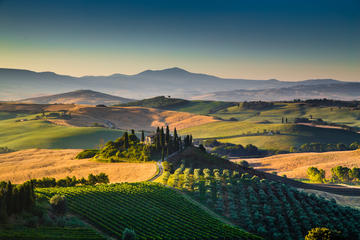 Vinci Chianti Wine and Aperitivo Small Group Tour by Minivan from...