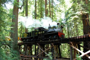Roaring Camp Steam Train in the Santa...