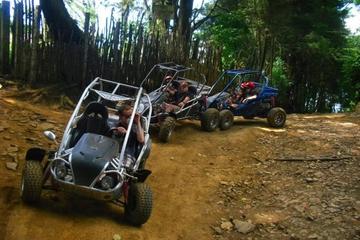 Aventura en buggy por las dunas de Laguna Verde con una excursión...