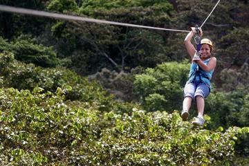 Aventura en tirolina en Apaneca con excursión opcional por la Ruta de...