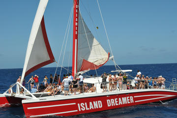 Tropical Dreamer Catamaran Snorkelling Cruise