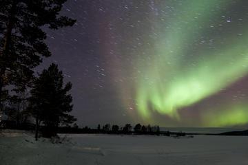 Aventura de Luzes do Norte na Lapônia...