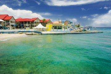 Grand Cayman Shore Excursion: Island...