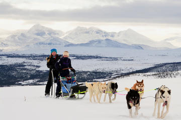 Lapland Husky Sled Safari from Tromso