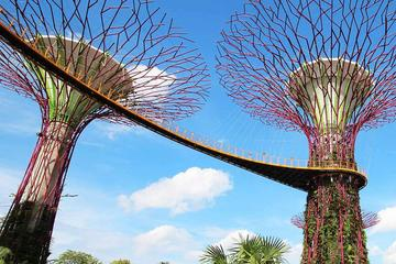 Gardens by the Bay Entry