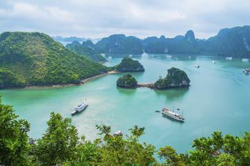 Cruzeiro particular velejando pela Baía de Halong de Hanói
