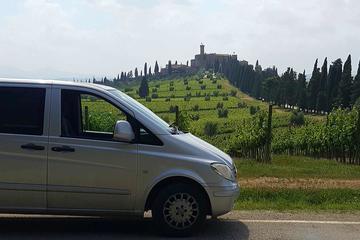 Brunello di Montalcino Wine Tour