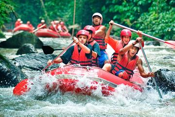 Ayung Rafting and Uluwatu Tour