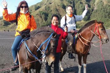 3D2N Mount Bromo & Mount Ijen Tour...