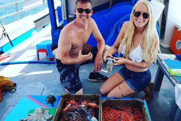 Santorini Traditional Fishing Experience and Fresh Fish Lunch