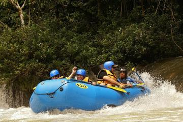 Lacandon Jungle Tour from Palenque