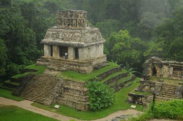 Recorrido de un día completo por las ruinas mayas de Palenque...