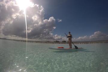 Sunrise Experiencie Standup paddleboarding Tour in Laguna Bacalar
