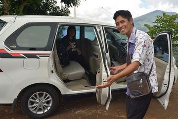 Private Car Charter: Custom Tour Bali As You Wish with Bali Driver Guide