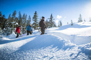 Whistler Snowshoeing Adventure with Optional Peak 2 Peak Ticket