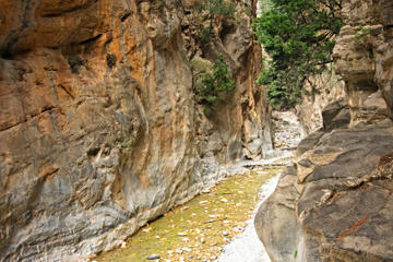 Imbros Gorge Hiking Day Trip
