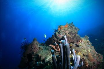 PADI Advanced Open Water Diver, Option 1, 2 days in Tulamben