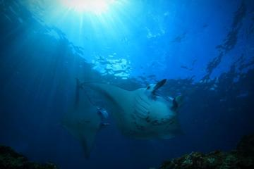 PADI Advanced Open Water Diver, Option 2, 1 day in Tulamben and 1 day in Nusa Penida
