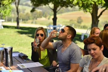 Hunter Valley Wine Tour with Cheese, Chocolate and Lunch
