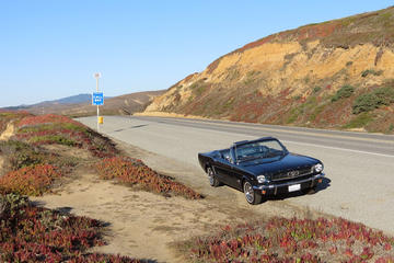 Classic Mustang Convertible Rental from Costa Mesa