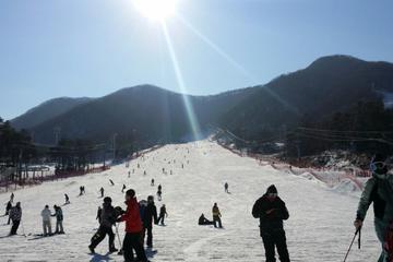 ソウル発:芝山スキー リゾートまたは陽智リゾー…