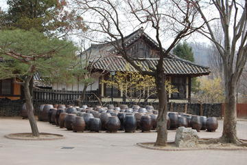 Korean Folk Village Afternoon Tour...