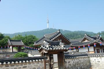 Seoul Morning Half-Day Tour including Seoul Tower, Namsan Hanok...